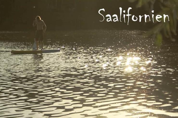 Saalifornien 2014