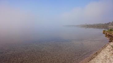 Nebel auf dem See
